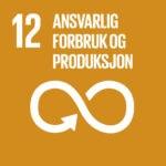 FNs Bærekraftsmål 12 - Bærekraftsmålene - Bærekraftig utvikling - FN bærekraftsmål - tusenårsmål - bærekraftsmål - Gi Barna Håp