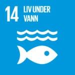 FNs Bærekraftsmål 14 - Bærekraftsmålene - Bærekraftig utvikling - FN bærekraftsmål - tusenårsmål - bærekraftsmål - Gi Barna Håp